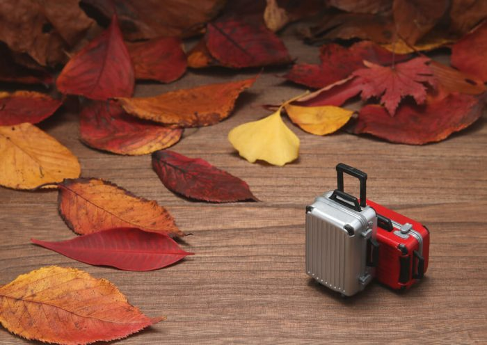Hacer la maleta para otoño