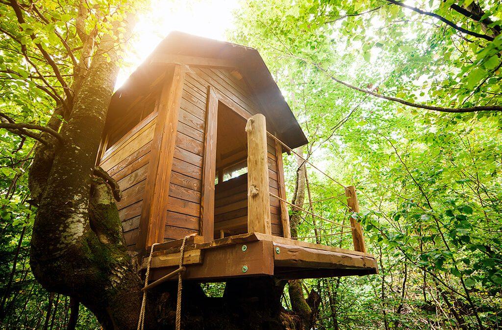 5 Hoteles en cabañas de árbol, para dormir como Tarzán