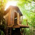 Hoteles en cabañas de árbol