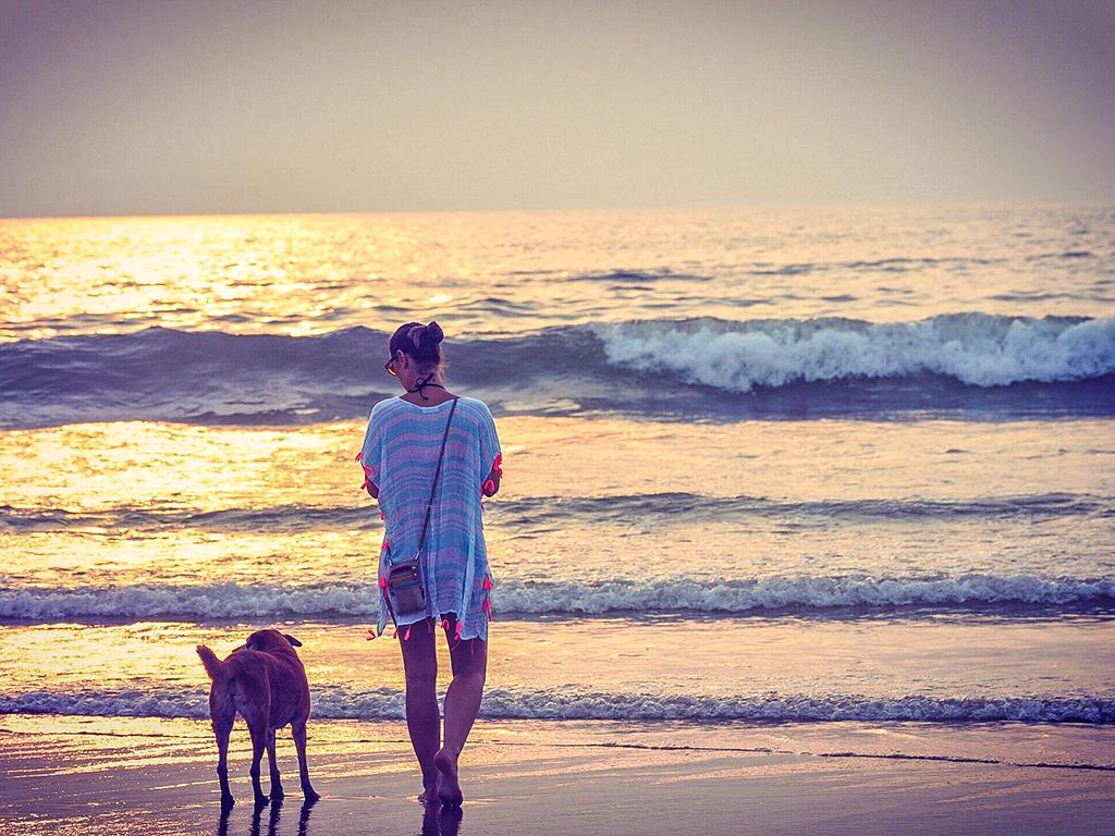 Playa para ir con perro