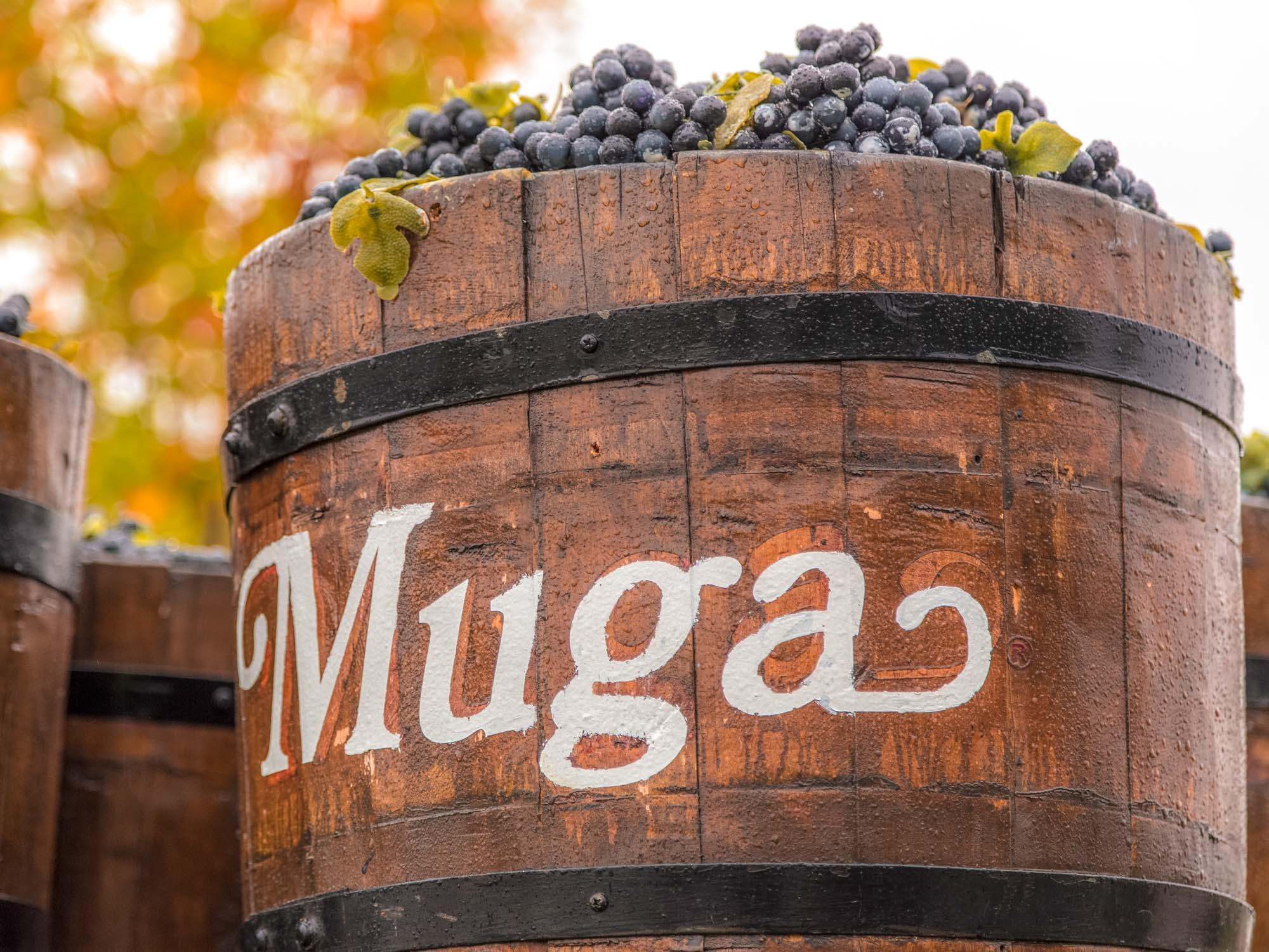 Bodegas Muga, bodegas de La Rioja