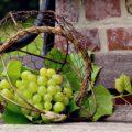 Ruta del Vino de La Mancha